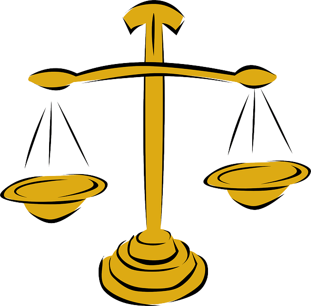 SCALES GIVE OPERATIONAL DEFINITION TO WEIGHT